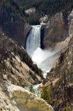 Yellowstone abbassa le cadute Fotografia Stock