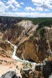 Yellowstone cai no parque nacional de Yellowstone fotografia de stock