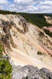 Yellowstone cai no parque nacional de Yellowstone fotografia de stock royalty free