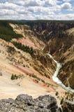 Yellowstone cai no parque nacional de Yellowstone fotos de stock royalty free