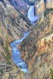 Yellowstone cai, parque nacional de yellowstone, wyoming, EUA Imagens de Stock
