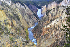 Yellowstone cai, parque nacional de yellowstone, wyoming, EUA Fotografia de Stock