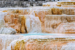 Yellowstone, chutes de palette, Mammoth Hot Springs Images libres de droits