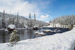 Yellowstone en invierno foto de archivo