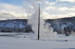 Yellowstone en invierno foto de archivo libre de regalías