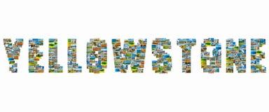 Yellowstone föreställer collage Fotografering för Bildbyråer