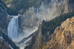 Yellowstone Falls Stock Image
