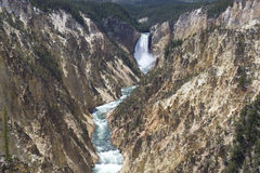 Yellowstone Falls Stock Images