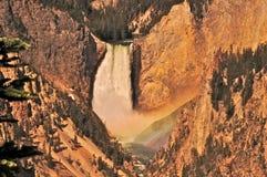 Yellowstone Falls. Scenic view of Yellowstone Falls waterfall in Yellowstone National Park, Wyoming, U.S.A Royalty Free Stock Photo