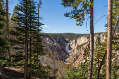 Yellowstone Falls Landscape Royalty Free Stock Images