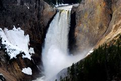 Yellowstone Falls. Tallest falls in Yellowstone National Park and probably the most photographed Stock Image