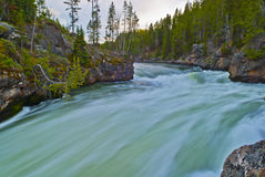 Yellowstone-Fluss Stockfotos