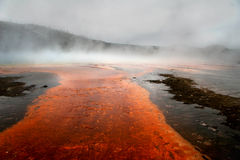 Yellowstone Geisers Foto de Stock