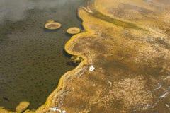 Yellowstone geotermisk pöl 2 Arkivfoton