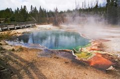 Yellowstone geothermal geyser Royalty Free Stock Image
