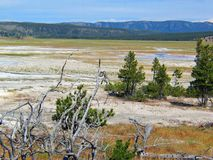 Yellowstone Park geothermal Geyser Basin Landscape stock photography