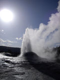 Yellowstone Geyser. The sun backlights the eruption of a geyser in Yellowstone stock image