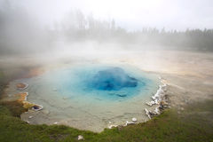 Yellowstone Geyser Royalty Free Stock Photos