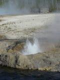 Yellowstone Geyser Stock Photo