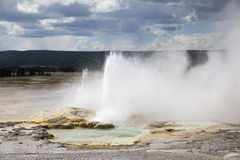 Yellowstone geyser Royalty Free Stock Photo