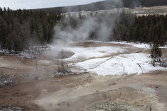 Yellowstone Geyser Field. Sulphur gases exiting the earth through geyser vents with snow on the ground Stock Image