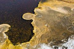 Yellowstone hot spring algal mat detail Royalty Free Stock Photos