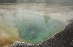 Yellowstone Hot Springs. Hot thermal spring in Yellowstone National Park Royalty Free Stock Photos