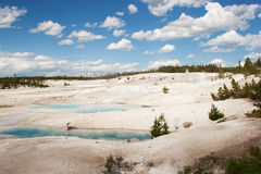Yellowstone Hot Springs Royalty Free Stock Photography