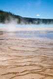 Yellowstone Hot Springs. Grand Prismatic Hot Springs mud flats in Yellowstone National Park, Wyoming stock image