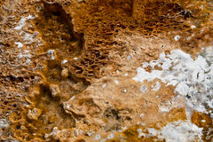 Yellowstone hot springs natural background Royalty Free Stock Photography