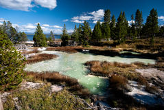 Yellowstone Hotspring. With a nice green color Royalty Free Stock Photos