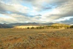 Yellowstone i September Arkivfoto