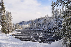 Yellowstone i vinter Royaltyfri Bild
