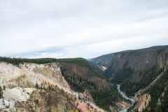 Yellowstone kanjon Royaltyfria Bilder