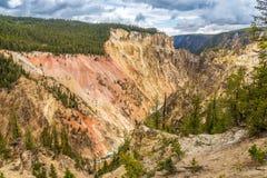 Yellowstone kanjon med floden Royaltyfria Foton