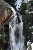 Yellowstone kanjonbro Fotografering för Bildbyråer