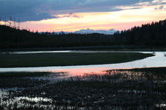 Yellowstone Krajobraz Zdjęcie Royalty Free