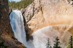 Yellowstone lägre nedgångar med regnbågen. Royaltyfri Fotografi