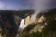 Yellowstone lagere daling in een de zomerochtend stock fotografie