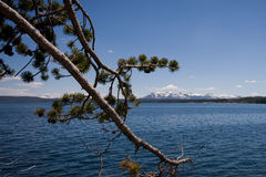 Yellowstone Lake. Images at midday from Yellowstone national park in Wyoming stock images