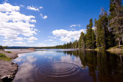 Yellowstone Lake. Images at midday from Yellowstone national park in Wyoming stock photography
