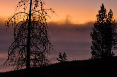 Yellowstone Lake Dawn Royalty Free Stock Photography