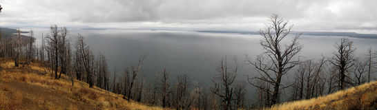 Yellowstone lake panorama (Wyoming, USA). Panoramic view of Yellowstone lake on a cloudy day (Wyoming, USA Stock Images