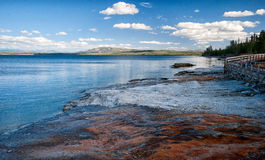 Yellowstone Lake. Panoramic view of lakeside of Yellowstone Lake Stock Images