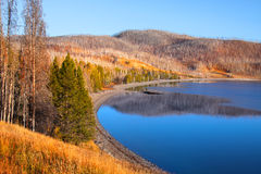 Yellowstone lake shore Royalty Free Stock Photography