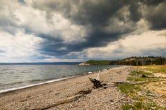 Yellowstone Lake Shore. Storm Clouds gathering over Yellowstone Lake shoreline in Yellowstone National Park, Wyoming royalty free stock image
