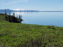 Yellowstone Lake with Snowy Mountains in the Distance. Yellowstone Lake with lush grass in the foreground, a rocky coastline and the snow capped mountains of the royalty free stock photos