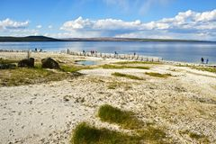 Yellowstone Lake in Summer Royalty Free Stock Image