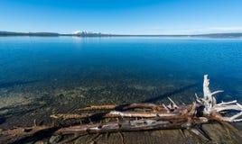 Yellowstone Lake, Wyoming Royaltyfri Fotografi