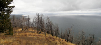 Yellowstone lake (Wyoming, USA). Yellowstone lake on a cloudy day (Wyoming, USA Royalty Free Stock Photo